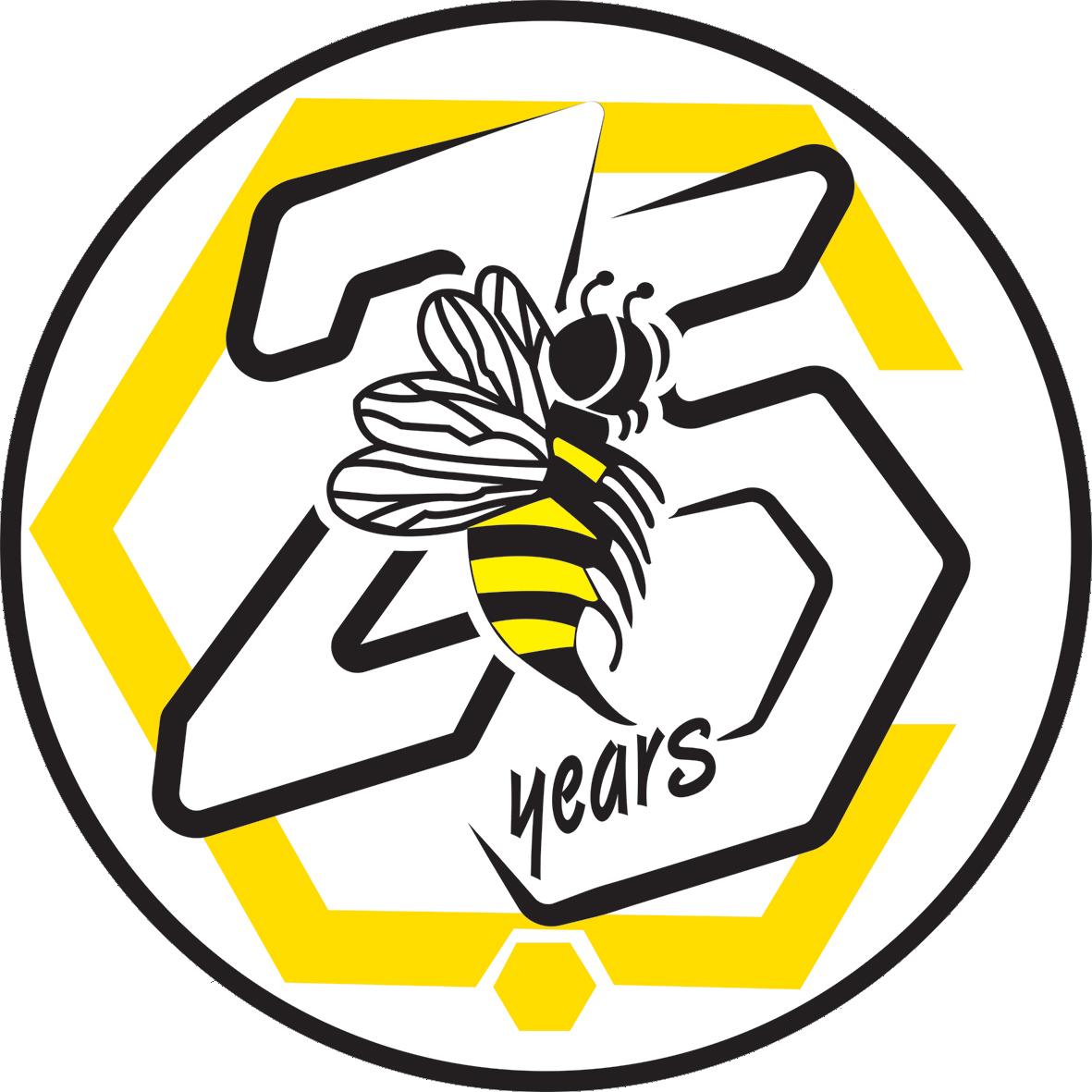 Çankaya 25. Year Logo